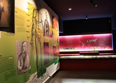 Exposition Musée Docteur Mérieux
